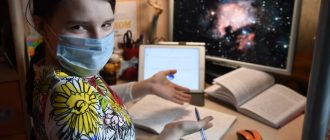 Новгородская областная Дума предлагает тратить материнский капитал на покупку компьютеров, ноутбуков и планшетов