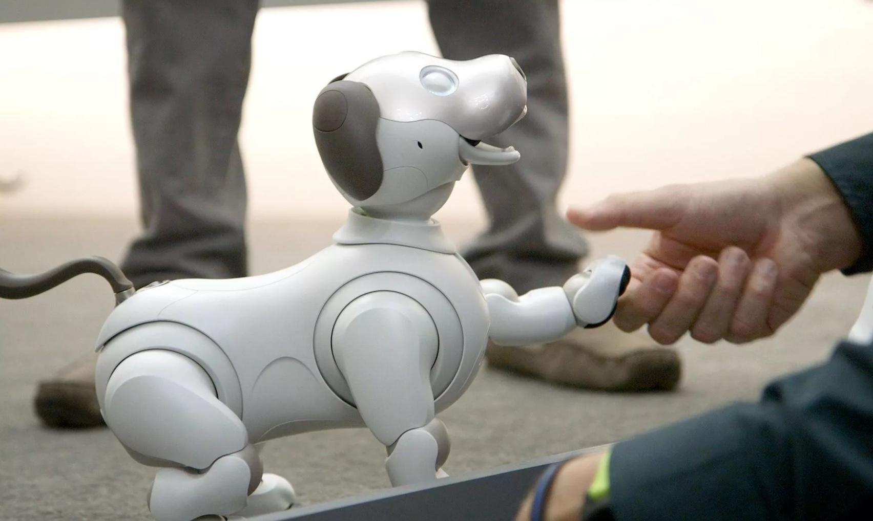 Российская собака-робот удивляет